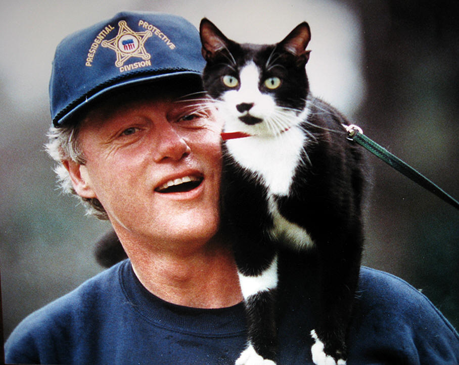 http://www.americanheritage1.com/assets/images/presidents/bill-clinton-favorite-cat-socks-photo-1.jpg